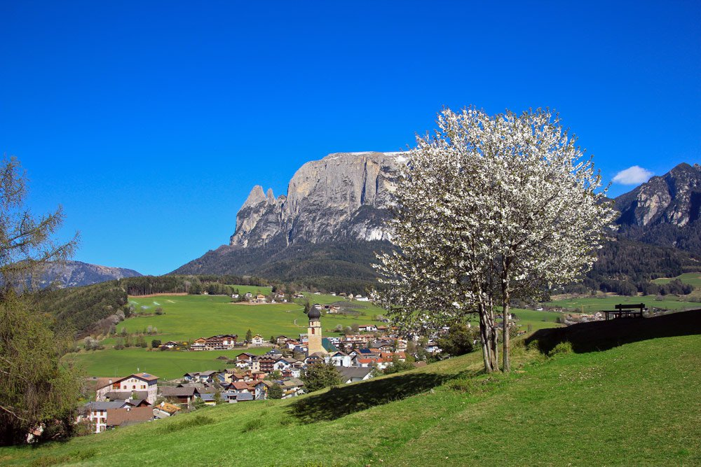 Spring at the Peternaderhof in Völs am Schlern