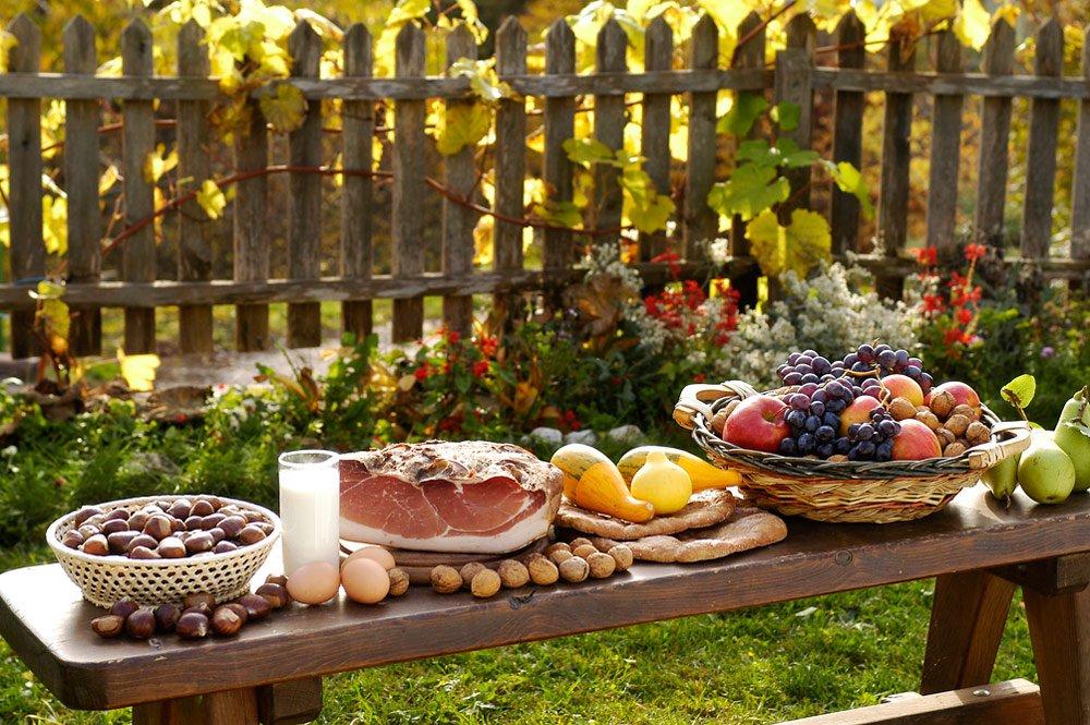 Urlaub im Herbst auf dem Peternaderhof erleben